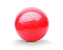 SPORTWELL Gymnastický míč 65cm