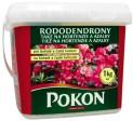 POKON rododendrony