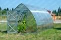 Polykarbonátový skleník  Strelka 8 m (8x2,6 m)