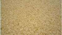 Obdelníkový koberec Elite Shaggy ivoor 200 x 300 cm