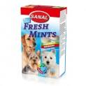SANAL Fresh Mints-s mátou 85tb