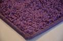Koberec Color Shaggy fialový š. 4 m dĺžka podľa priania vrátane obšitie