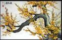 Feng Shui Cherry Blossom olejomaľba plátno