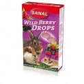 SANAL WILDBERRY dropsy s lesními plody 45g DOPRODEJ