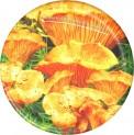 Víčko Twist 66 mm 10 ks dekor houby 1880371